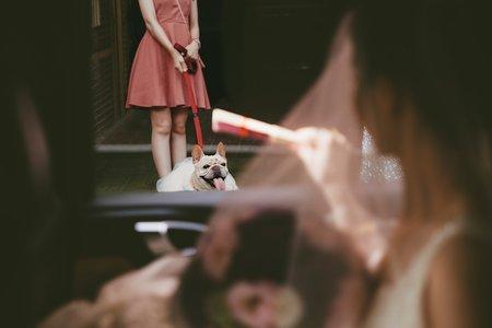 Reiki Photo女婚攝|結婚午宴 - 鳳山和樂宴會館