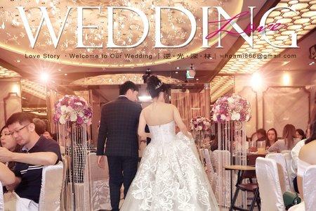 【逆光深林】 Wedding . LoveStory