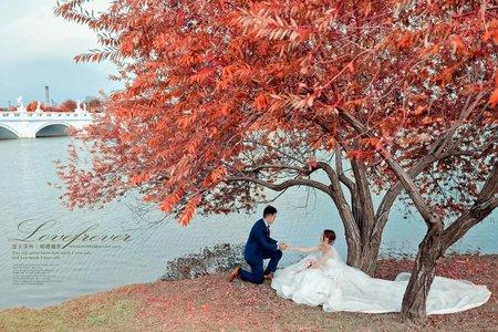 【婚紗外拍】  婚禮特別加拍