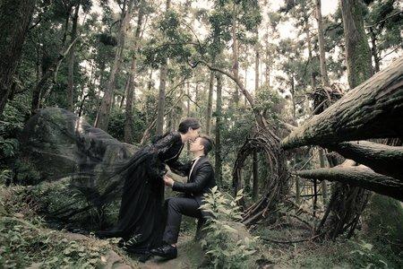 遇見黑森林