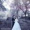 伊頓自助婚紗 (20)