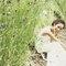 愛戀.戀愛 32- Aimee 法式婚紗