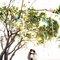 樹下的約定|浪漫草坪婚紗|慕思攝影08