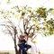 樹下的約定|浪漫草坪婚紗|慕思攝影20