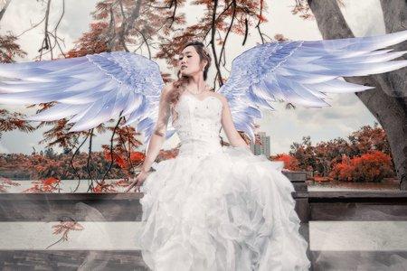 玩美嫁衣新娘秘書:泡泡的夢幻國度