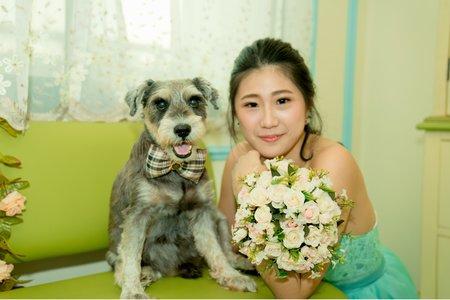 頂級寵物寫真婚紗 個人 狗狗寫真