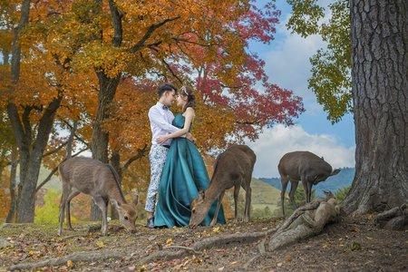 日本京都奈良。海外婚紗