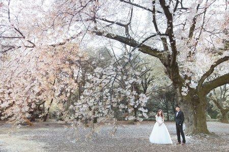 【海外婚紗】Tokyo