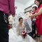 Wedding_Photo_2017_-038
