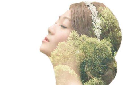 台北新秘Apple-水晶編髮造型