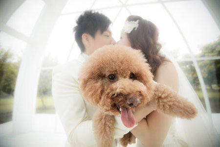 毛小孩婚紗照
