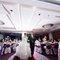 Wedding Photos-1279
