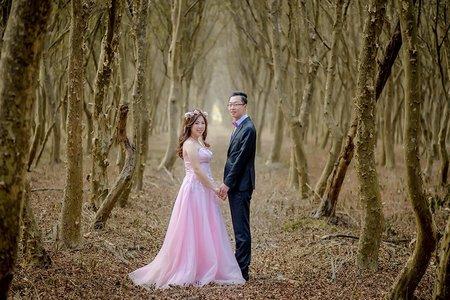 婚禮攝影-彰化原福岡婚宴會館-振華&尉慈- 訂婚晚宴