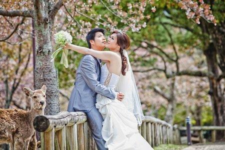 海外婚紗|日本
