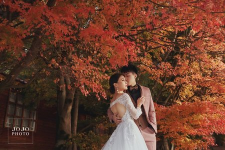 【欸!楓葉紅了、】