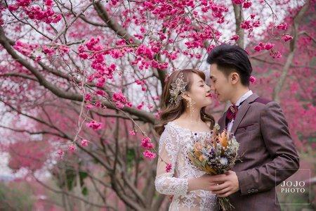 JOJO婚紗|浪漫櫻花🌸|婚紗攝影|客照分享
