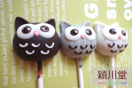 【動物系列】owl貓頭鷹 造型巧克力💕