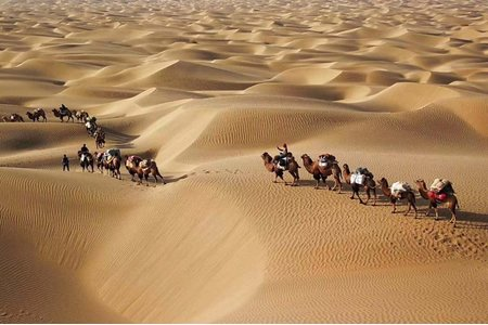 婚攝_沙漠