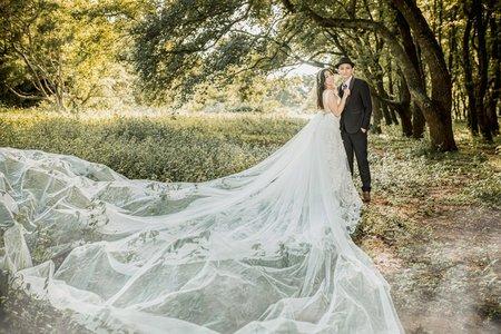 森林拍婚紗/小清新