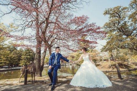 【日本拍婚紗】海外婚紗包套:大阪婚紗攝影