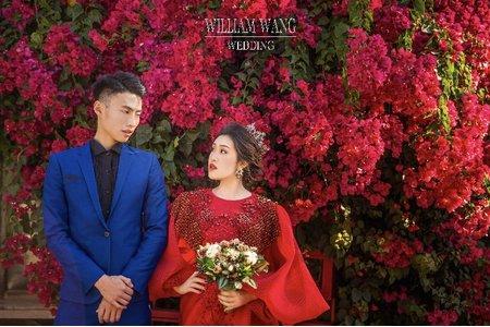 威廉王經典婚禮|浪漫婚紗照