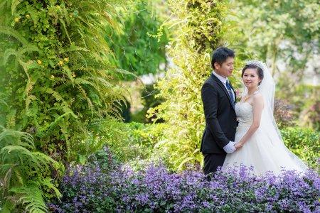 南投台一休閒農場  | 幸運草攝影工坊|結婚
