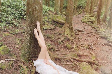 Lia 的森林系