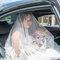 AhHo Wedding TEL-0937797161 lineID-chiupeiho (61 - 281)