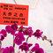 AhHo Wedding TEL-0937797161 lineID-chiupeiho (2 - 157)