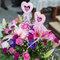 AhHo Wedding TEL-0937797161 lineID-chiupeiho (29 - 332)