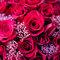 AhHo Wedding TEL-0937797161 lineID-chiupeiho (9 - 260)