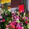 AhHo Wedding TEL-0937797161 lineID-chiupeiho (6 - 271)