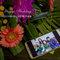 AhHo Wedding TEL-0937797161 lineID-chiupeiho (1 - 26)