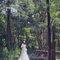 愛意自助婚紗攝影-台南景點5