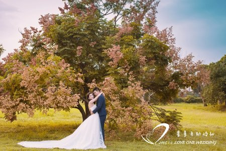 婚紗照/自助婚紗/婚紗攝影