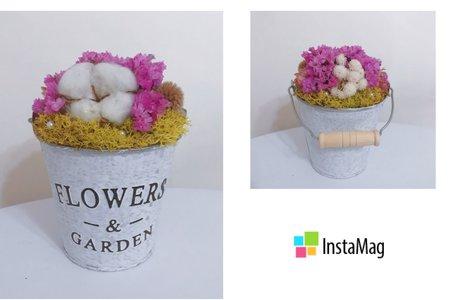 婚禮小物 乾燥花盆栽