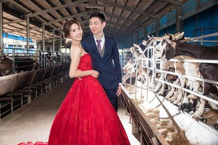 台南幸福水魚 朝暘珮琳 婚禮紀錄 屏東品福美饌會館 有感情的婚禮紀錄