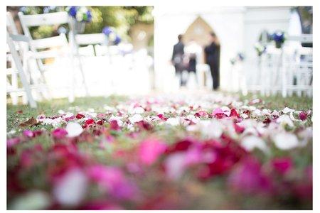 平面攝影 / 戶外婚禮