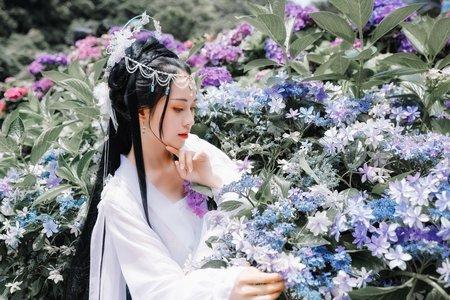 古裝繡球花