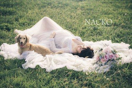 『孕媽咪寫真』哪隻狗Nacko