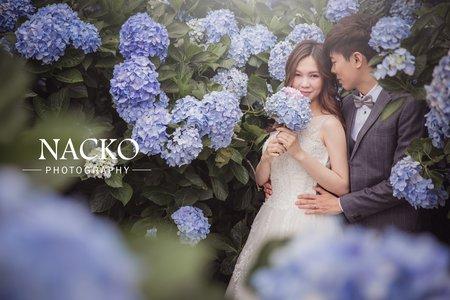 婚紗攝製 藍色花海