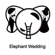 Elephant Wedding!