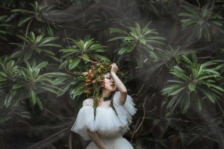台南凱驛莎 時尚婚紗 │ 攝影師創作-林裡的幽靈