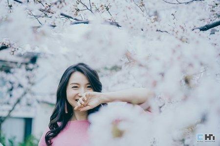 日本櫻花家族寫真