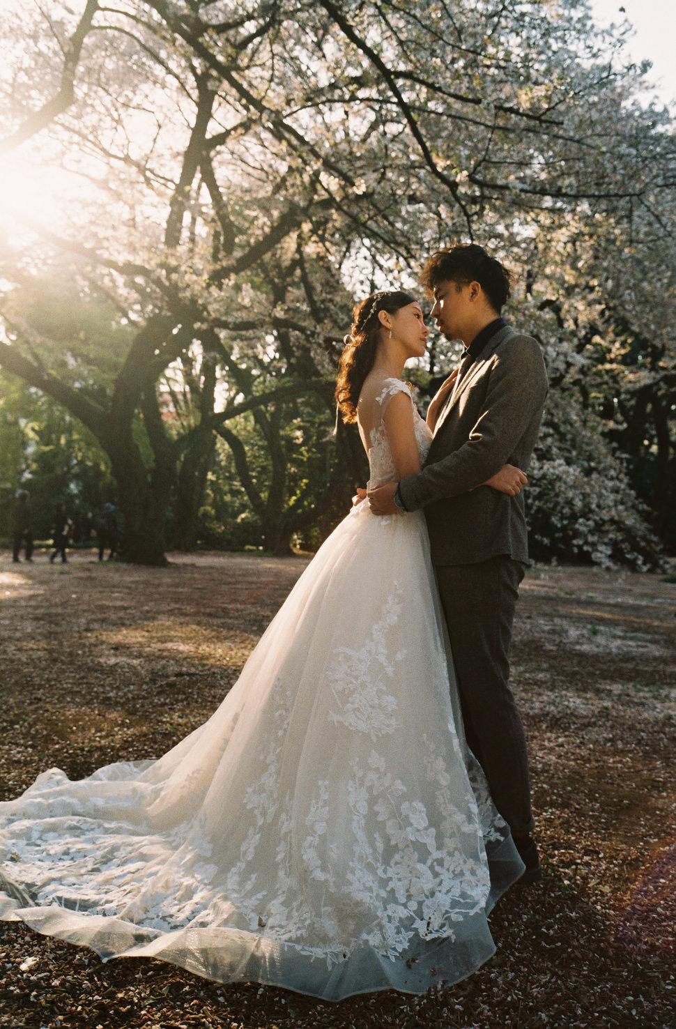 CNV000016 - All Good Wedding - 結婚吧