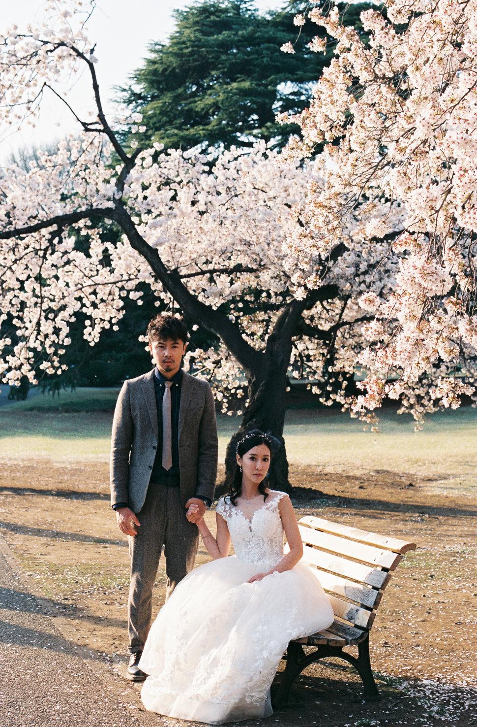 CNV000029 - All Good Wedding - 結婚吧