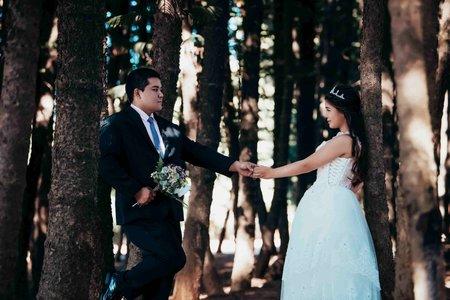 [婚紗攝影] 台中婚紗/台中景點/自助婚紗/婚紗照/D&L Wedding.