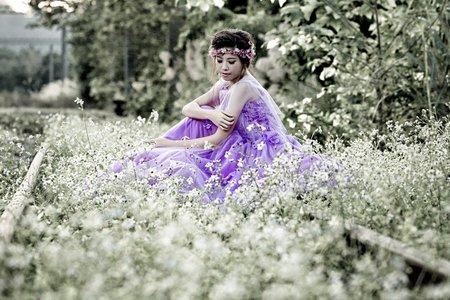 夢幻紫色森林