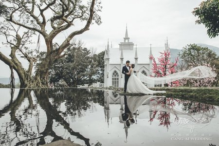 客照|Cang-Ai Wedding|粉紅泡泡
