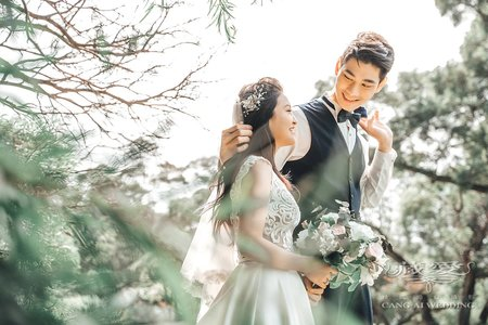 客照|Cang-Ai Wedding|自然小清新